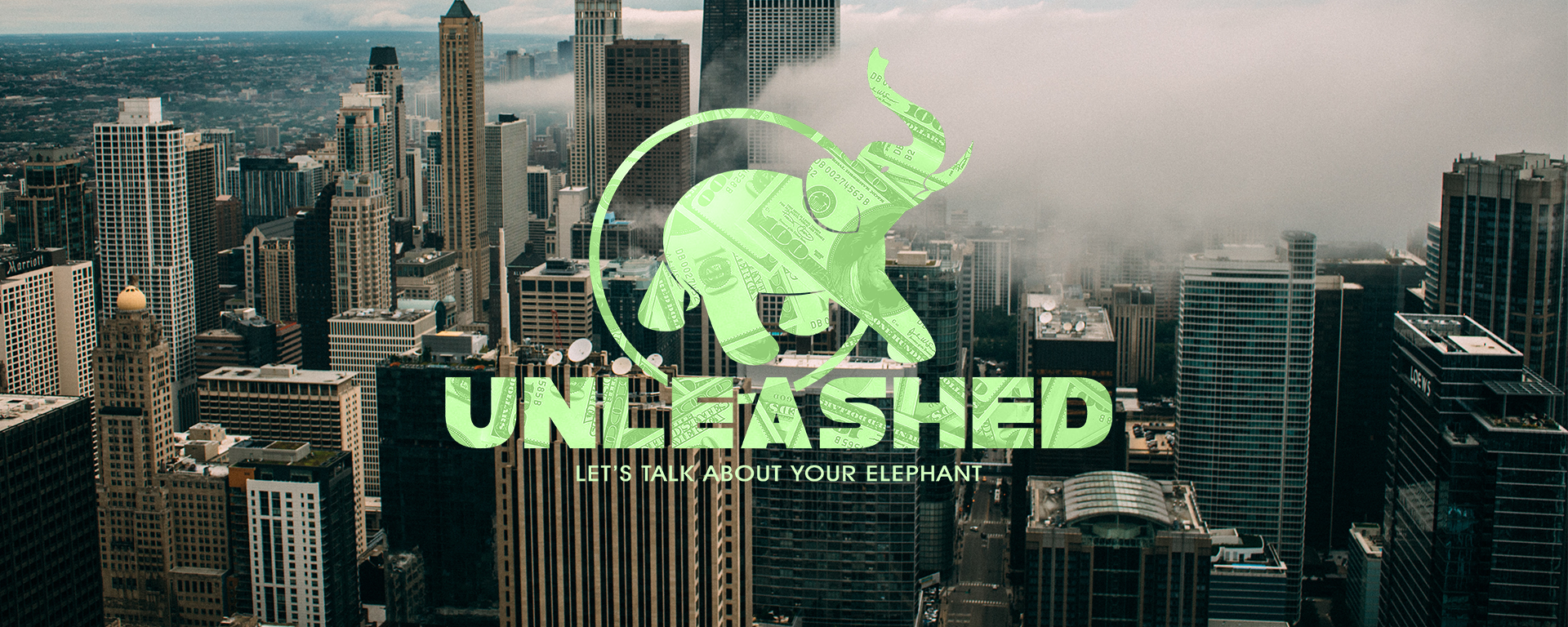 Unleashed webbanner