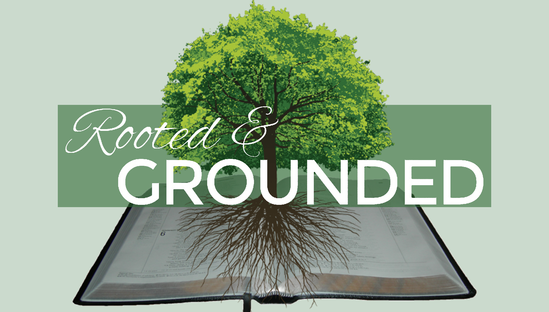 Rootedandgrounded green