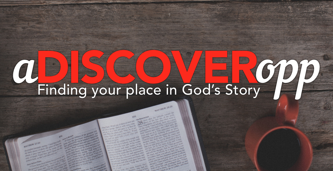 Discover opp logo
