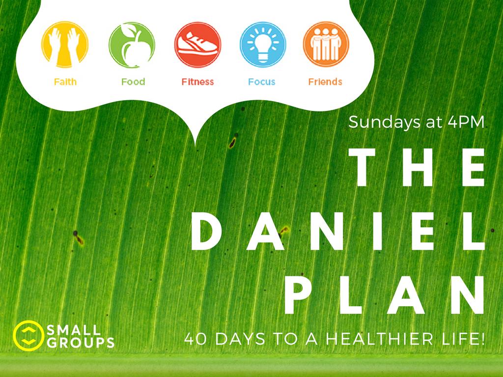 The daniel plan   pc