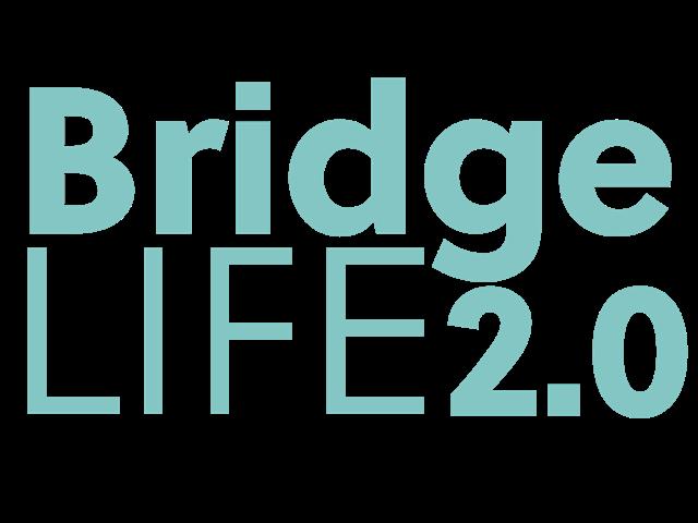 Bridgelife2.0 1082