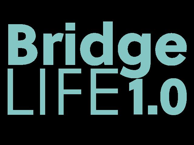 Bridgelife1.0 1028px