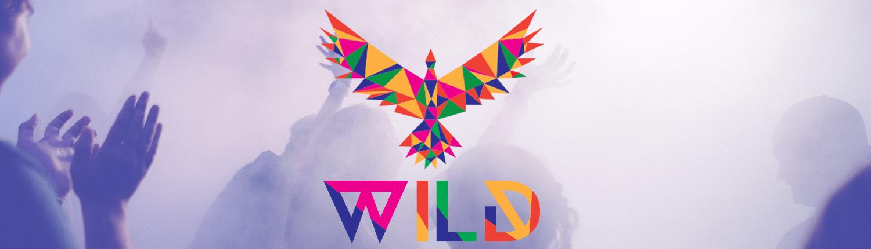 Wild slider