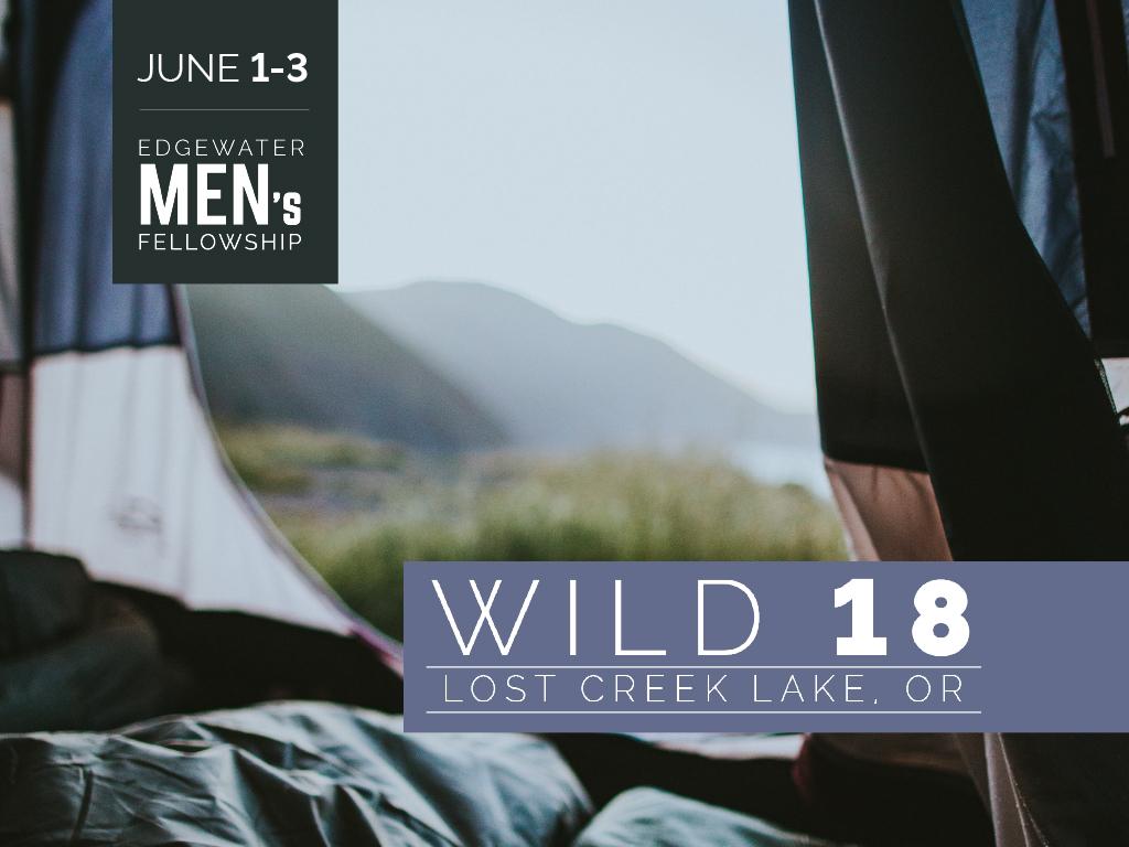 Wild 18 web
