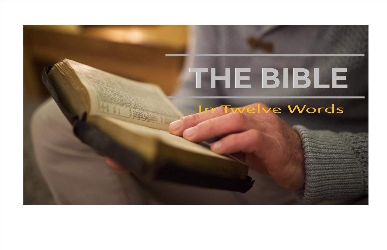 Bible in twelve words banner