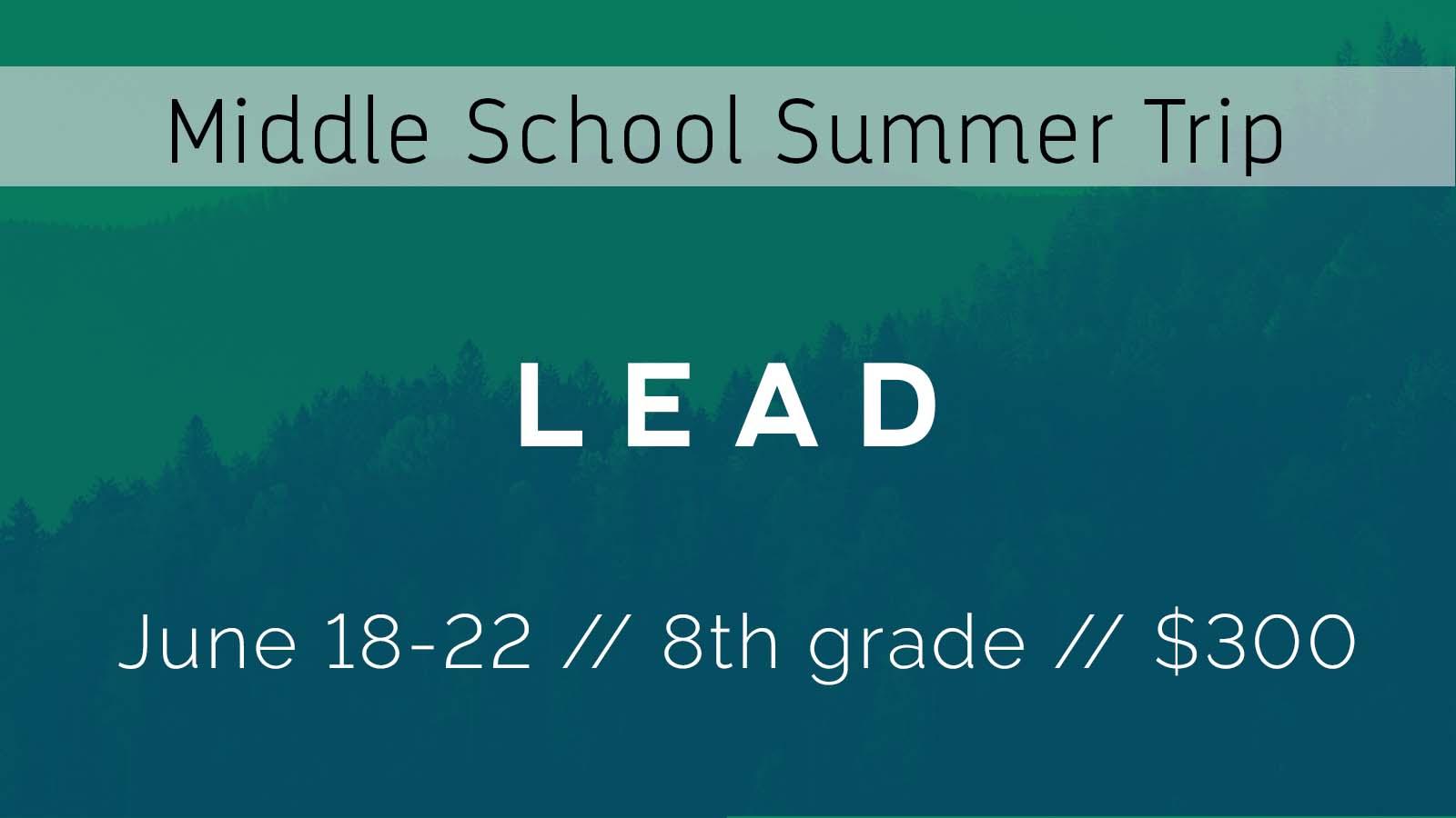 Ms lead trip large font