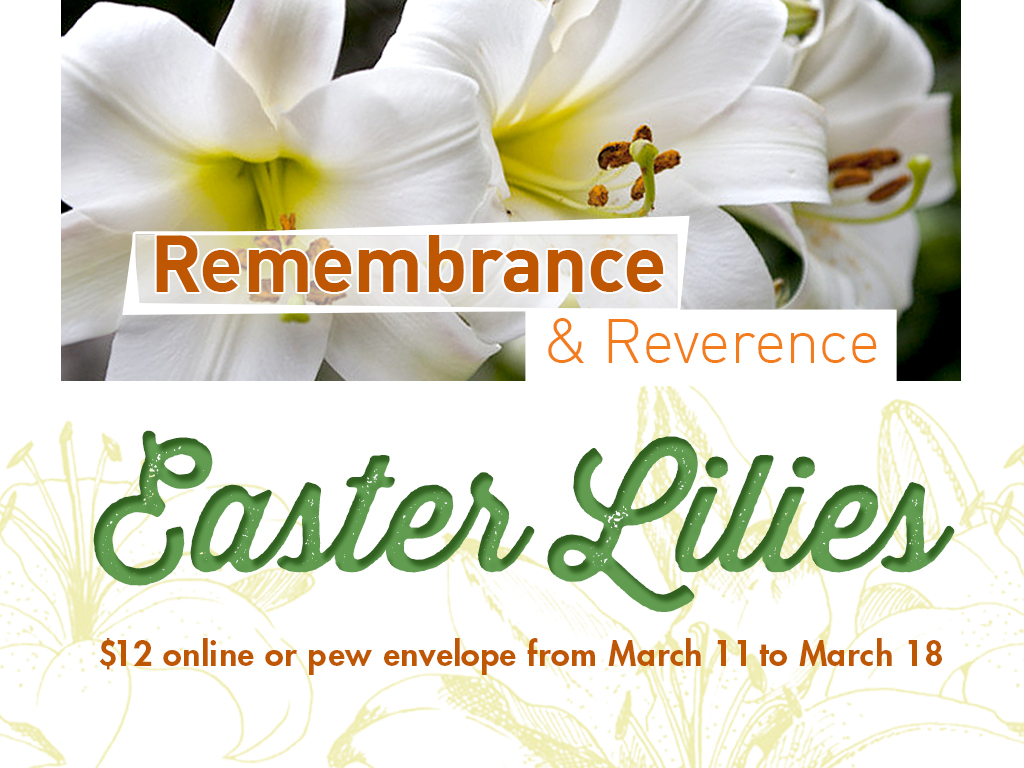Easter lily sale2018 sq