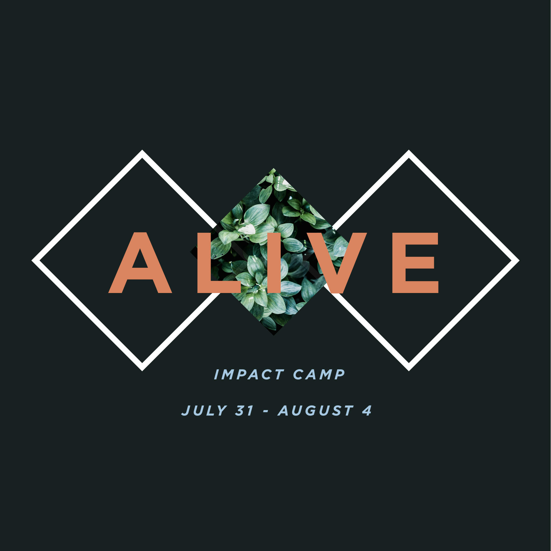Alive impactcamp promotional 16