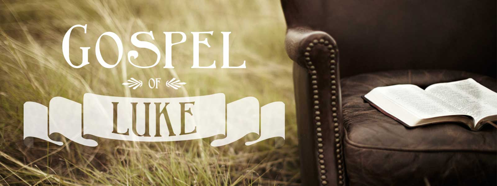 Gospel of luke sermon series idea