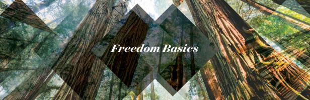 5400 frdm 17 freedom basics teb 616x200  1