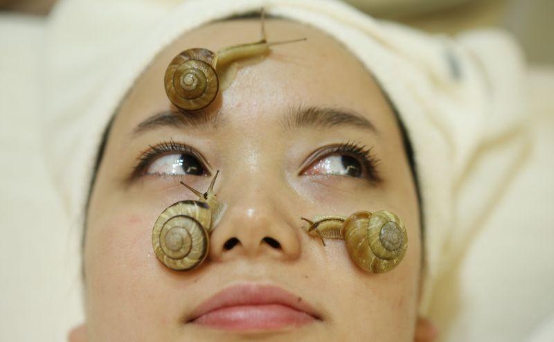 Wonder slime snail facial treatments in tokyo