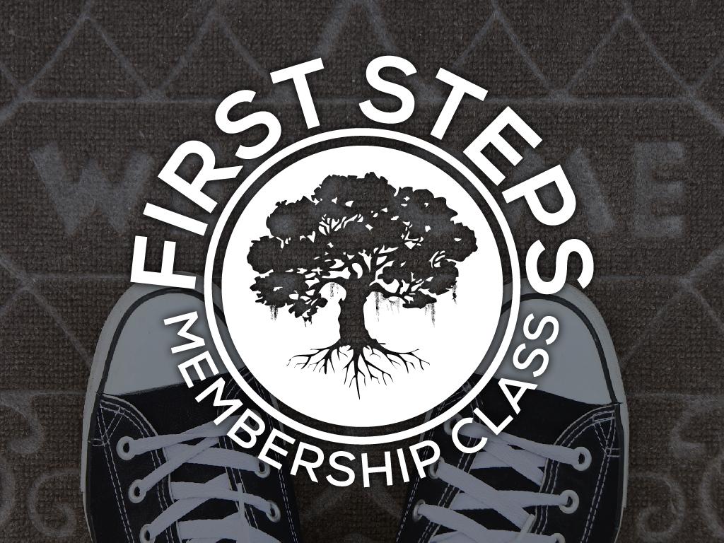 Slides first steps 1024x768