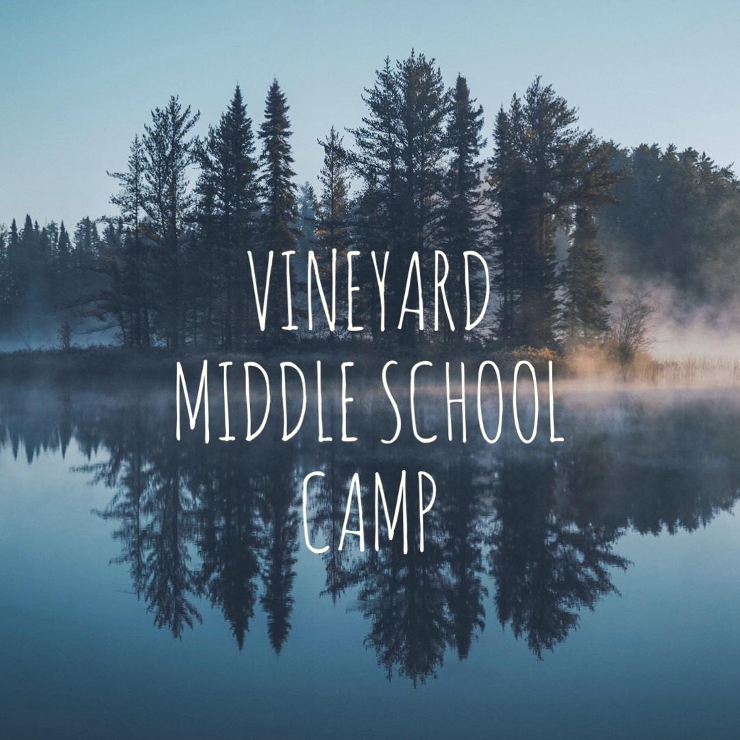 Ms camp 2018
