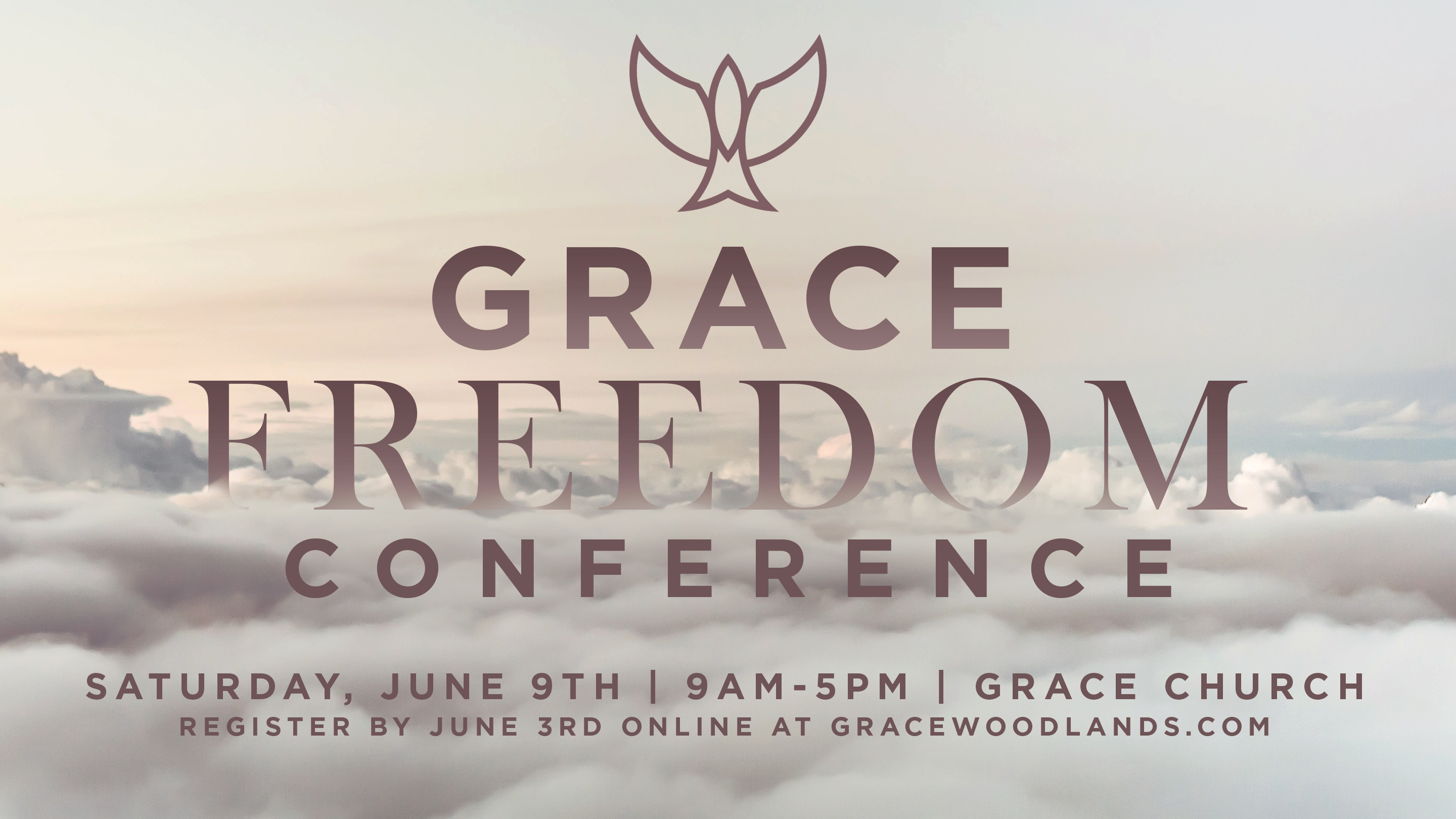 Freedom conference screen