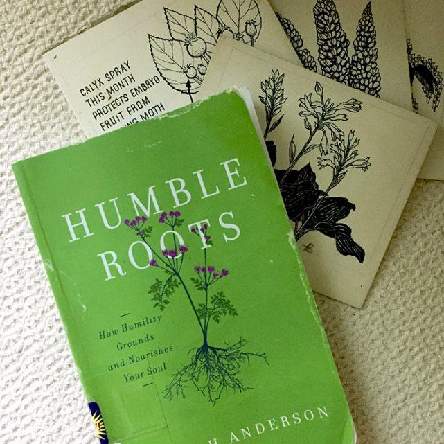 Humble roots 641x641