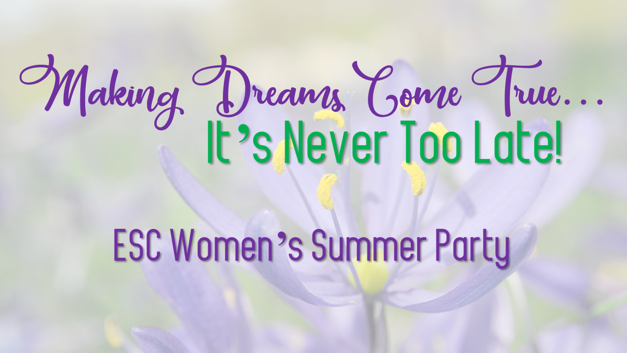 Womens summer party 2018   logo