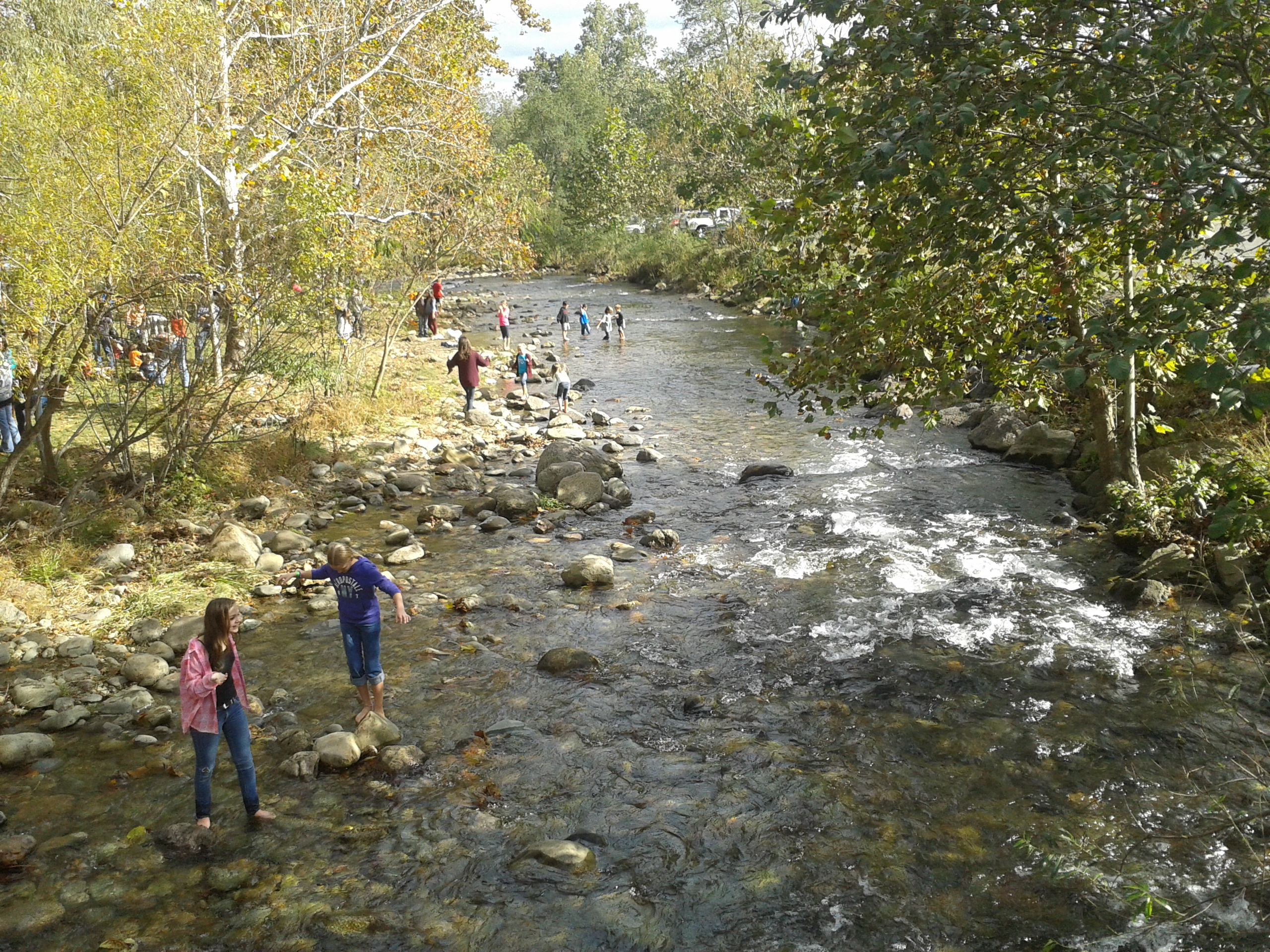 Children playing in the rose river at syria  virginia