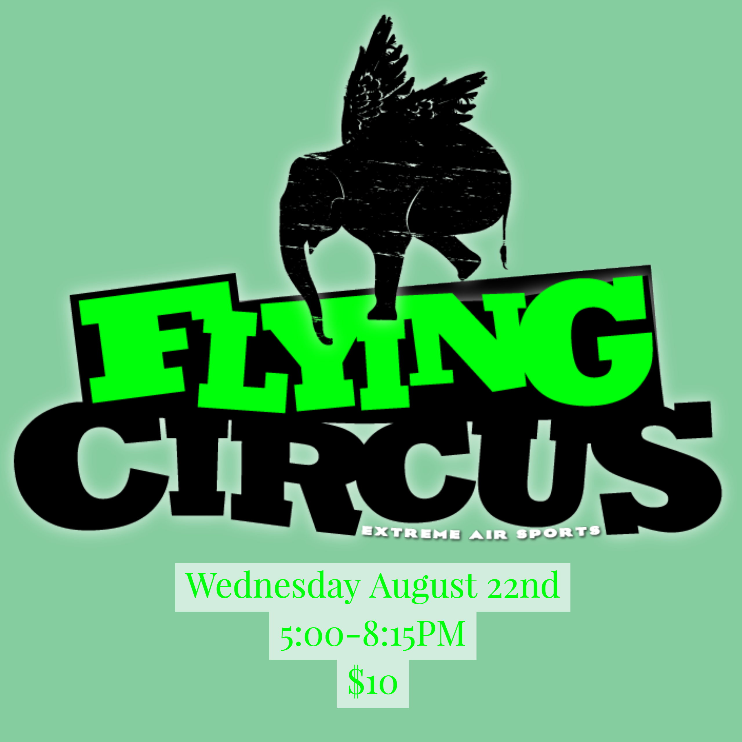 Flying circus square