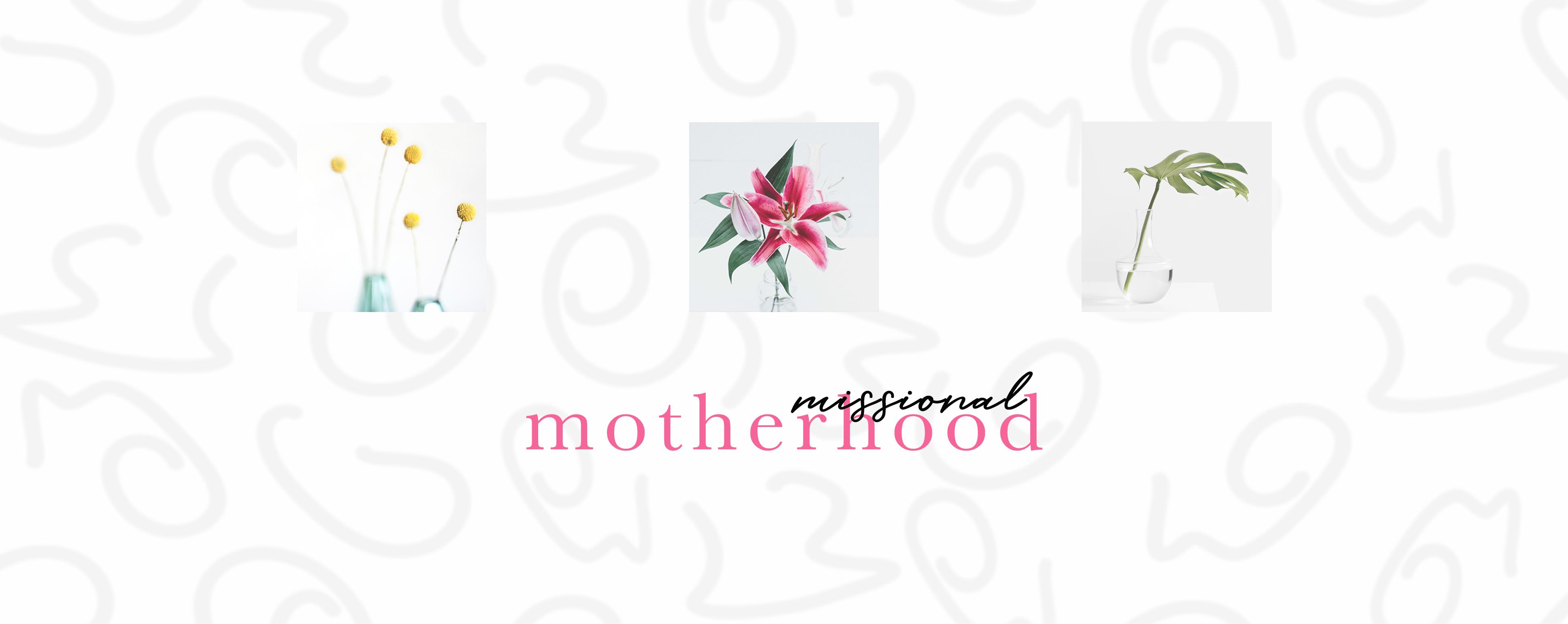 Web   missional motherhood