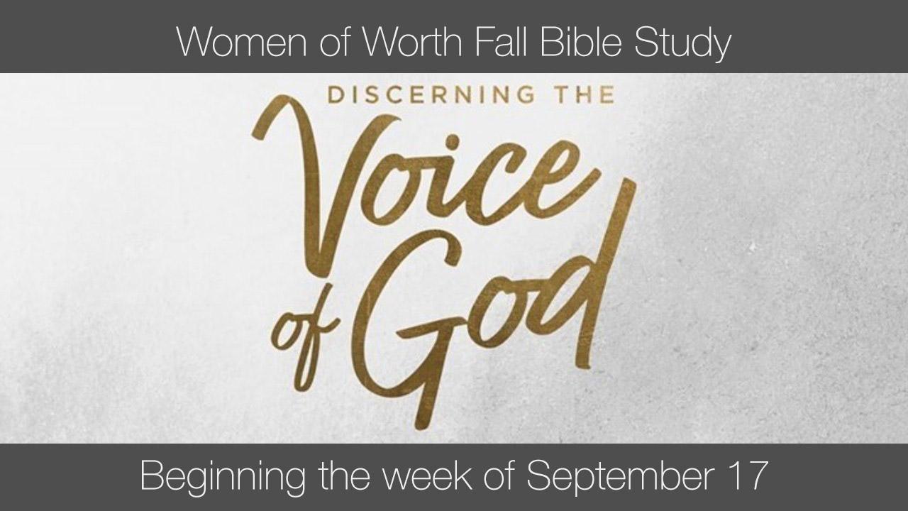 Wow bible study new