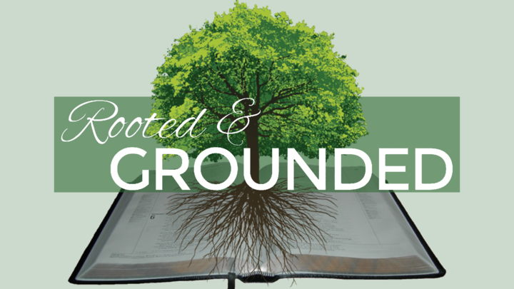 ROOTED & GROUNDED         (A 1-year Bible Study Course; co-taught by Dr. Beverly Smallwood and Felicia Johnson) logo image