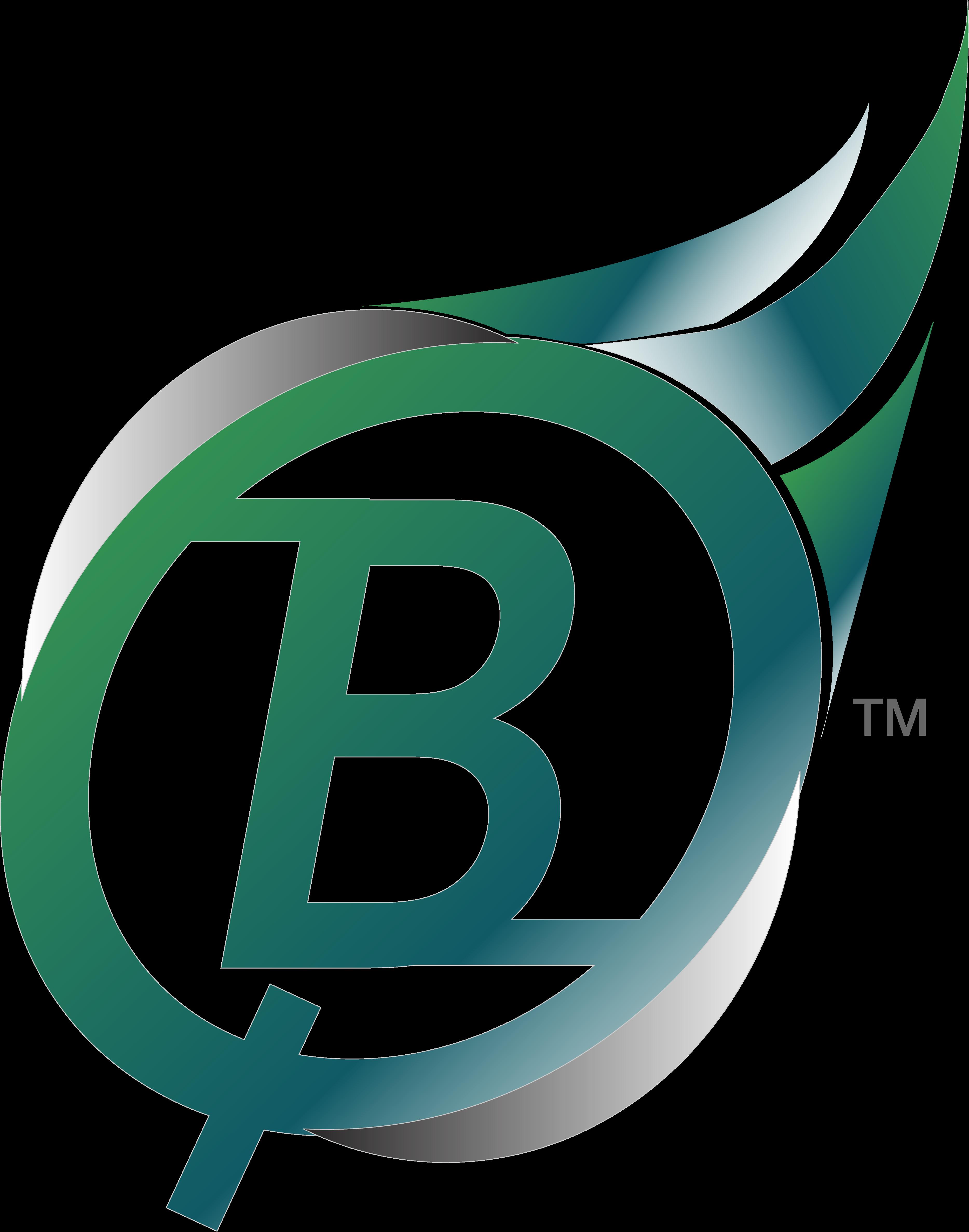 Bible quiz color logo