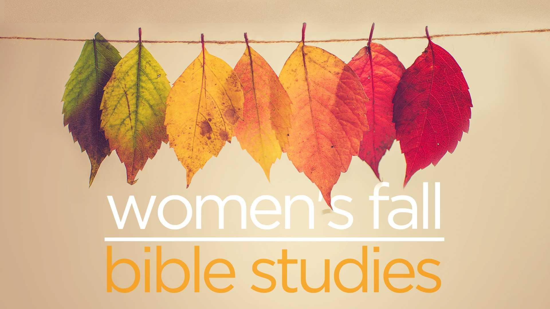 Women s fall study gen