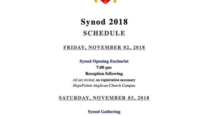 2018 Synod  logo image