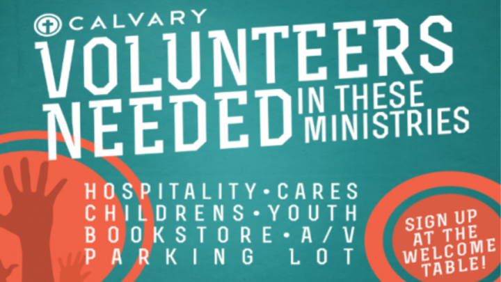 VOLUNTEER TO SERVE logo image