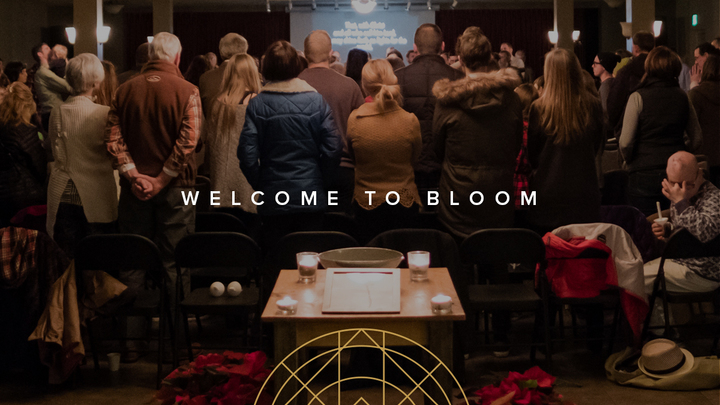 Welcome to Bloom logo image