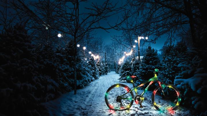 NFW | Christmas Bike Build | 2019: 12/8 logo image