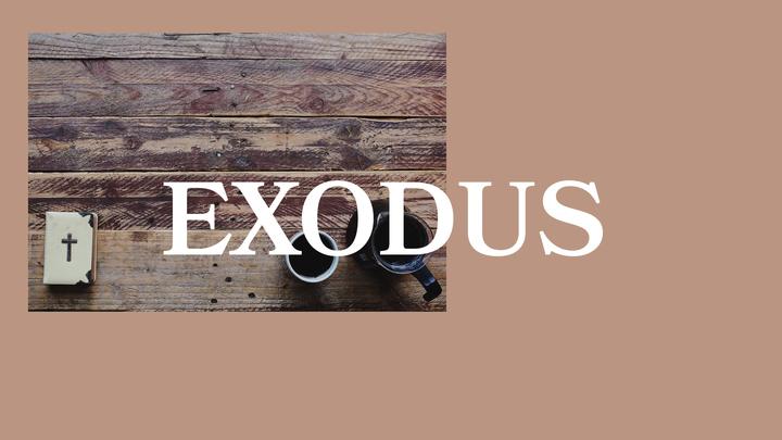 Medium exoduspco