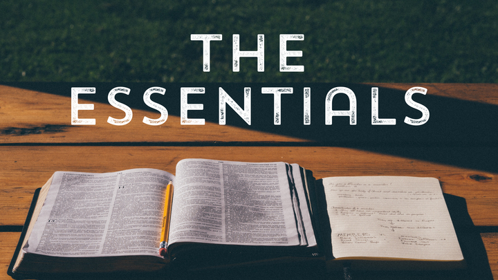 The Essentials:  Systematic Theology II logo image