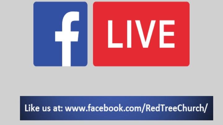 Red Tree on Facebook Live logo image