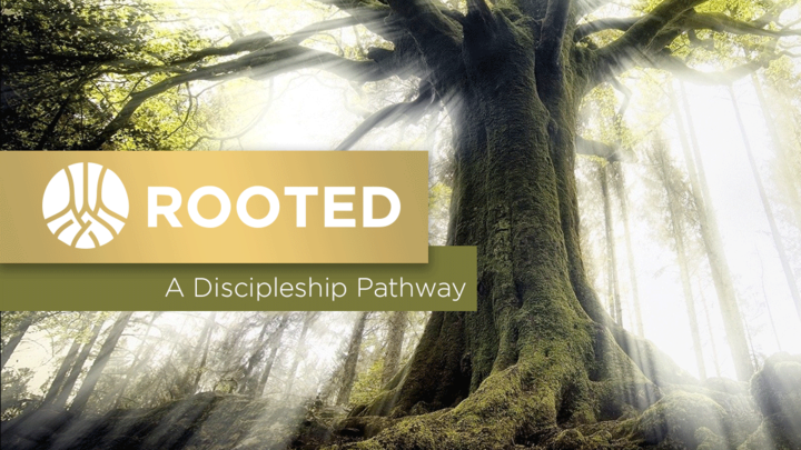 ROOTED Discipleship Groups 3.0 logo image