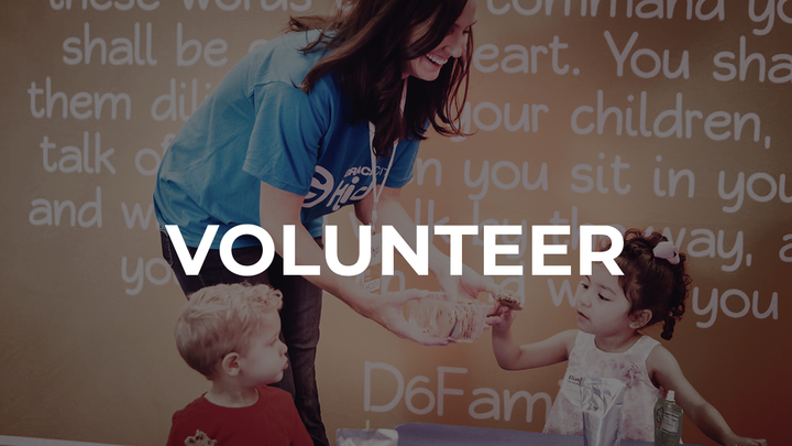Volunteer logo image