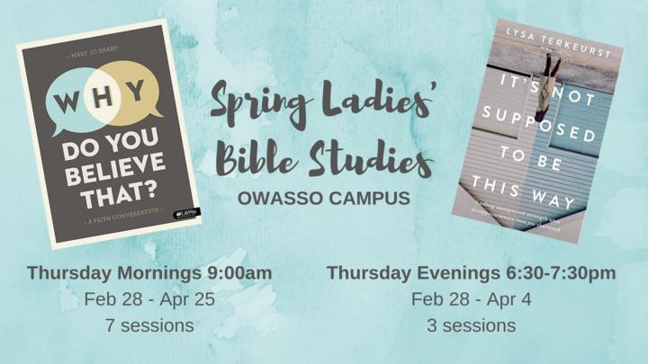 Medium spring ladies  bible studies  1