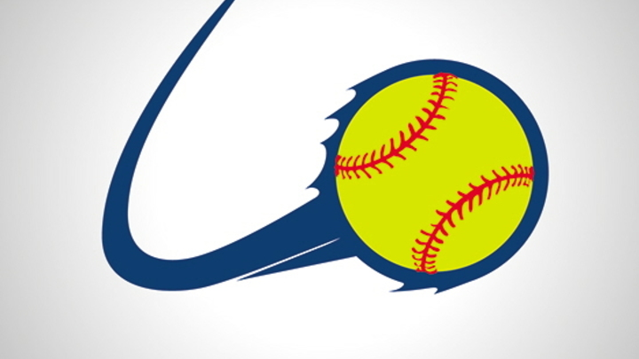2019 Summer Men and Coed Softball Leagues logo image
