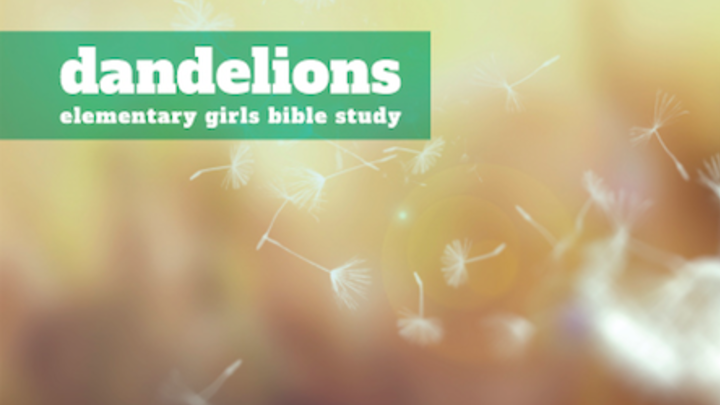 Dandelions | 3rd-5th Grade Girls Bible Study | Spring Branch logo image