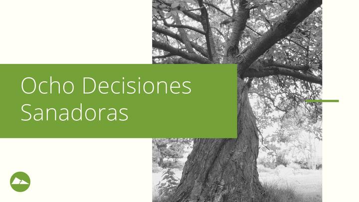 Ocho Decisiones Sanadoras  |  Internacional logo image