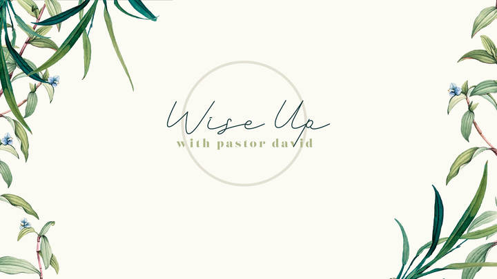Wise Up with Pastor David  logo image