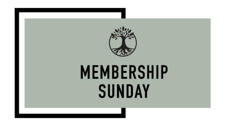 2019 BCC Membership logo image