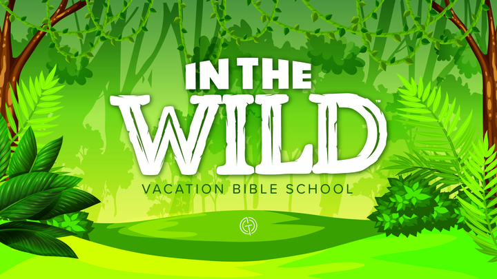 In the Wild VBS logo image