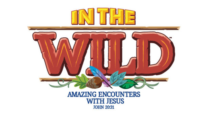 VBS 2019 | In the Wild logo image