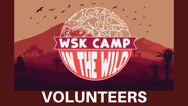 Wellspring Kid's Camp VOLUNTEER SIGN UP logo image