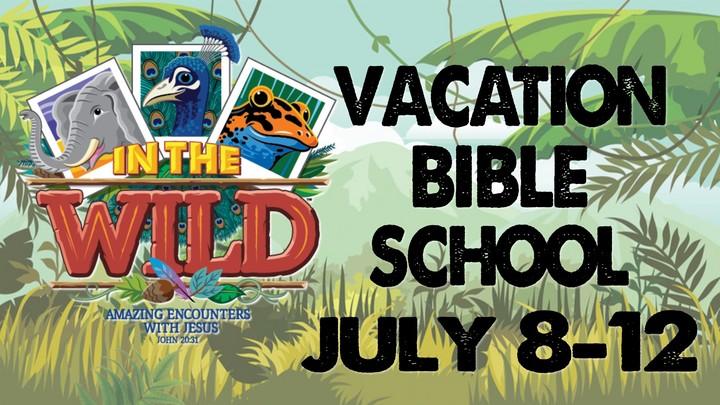 Vacation Bible School 2019 logo image