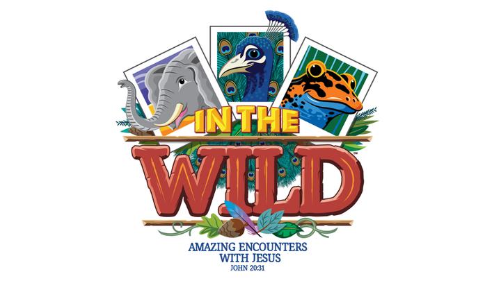 2019 Vacation Bible School logo image