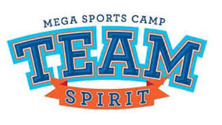 Mega Sports Camp logo image