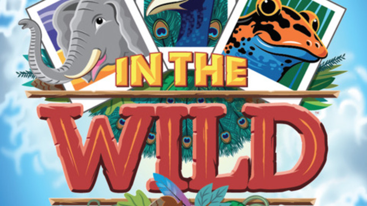"""In The Wild"" Preschool VBS logo image"
