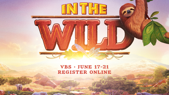 IN THE WILD: VBS logo image